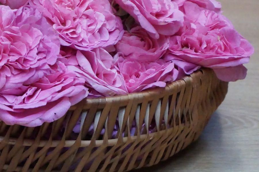 Sapun sa ružom