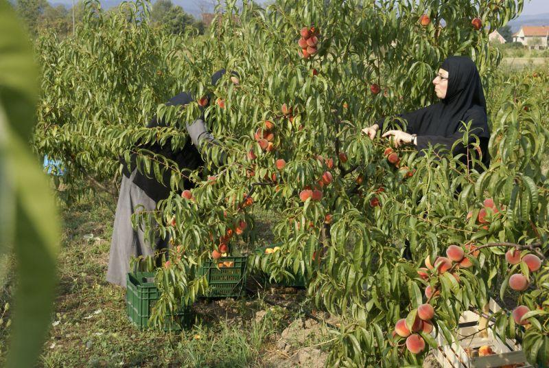 Sok od breskve i jabuke 0,72l
